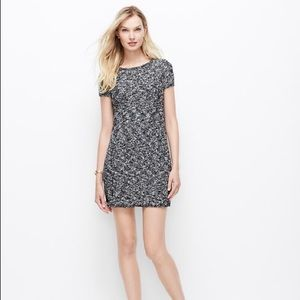 Ann Taylor Boucle Sweater Dress Faux Leather Sides